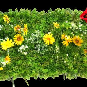 jardin vertical margaritas